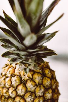 Free Ananas, Pineapple, Plant, Fruit Royalty Free Stock Photo - 100707365