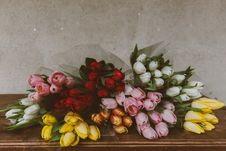 Free Flower, Floristry, Flowering Plant, Flower Arranging Royalty Free Stock Photo - 100715605
