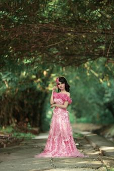 Free Photograph, Nature, Pink, Gown Royalty Free Stock Images - 100723599