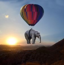 Free Hot Air Ballooning, Elephants And Mammoths, Hot Air Balloon, Sky Royalty Free Stock Photography - 100726307