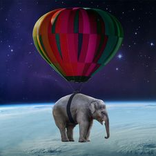 Free Elephants And Mammoths, Mammal, Sky, Atmosphere Of Earth Royalty Free Stock Photo - 100726745
