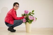 Free Flower, Flower Arranging, Pink, Floristry Royalty Free Stock Image - 100731516