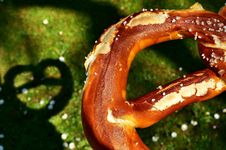 Free Close Up, Serpent, Organism, Pretzel Stock Images - 100772754