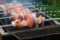 Free Shish Kebab Royalty Free Stock Image - 10081346