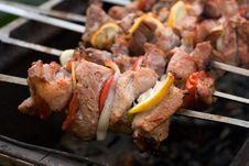 Free Shish Kebab Stock Images - 10081344