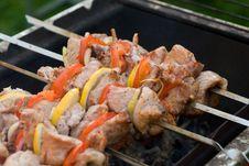 Free Shish Kebab Stock Photos - 10081363