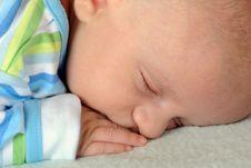 Free Sleeping Soundly Royalty Free Stock Image - 10086026