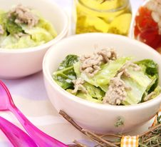Free A Stew Of Cabbage Royalty Free Stock Photography - 10086487