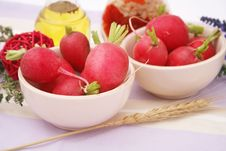 Free Red Radish Royalty Free Stock Photos - 10087058