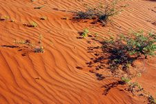 Free Red Centre, Australia Royalty Free Stock Photography - 10088907