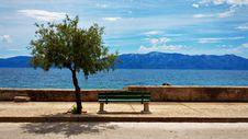 Free Sky, Shore, Sea, Tree Royalty Free Stock Photo - 100835565
