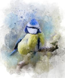 Free Watercolor Paint, Bird, Painting, Flightless Bird Stock Images - 100840274