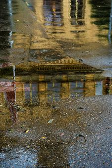 Free Reflection, Water, Leaf, Tree Stock Images - 100847654