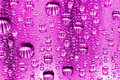 Free Pink Water Drops Stock Photo - 10093830