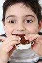 Free Happy Boy With Ice Cream Sandwich Royalty Free Stock Photos - 10098818