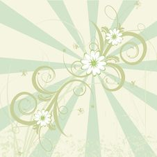 Free Floral Abstract Design Element Royalty Free Stock Photography - 10090097
