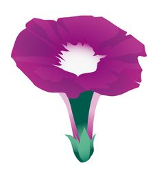 Free Morning Glory Flowers Royalty Free Stock Photography - 10096127