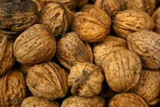 Free Nuts Stock Photos - 10096253