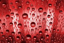 Free Red Water Drops Royalty Free Stock Image - 10098056