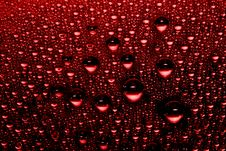 Free Red Water Drops Royalty Free Stock Photos - 10098088