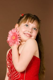 Free Girl With Flower Royalty Free Stock Image - 10098316
