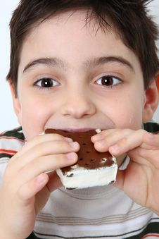 Free Happy Boy With Ice Cream Sandwich Royalty Free Stock Photos - 10098818