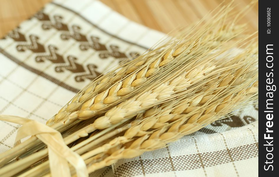 Gold wheat harvest
