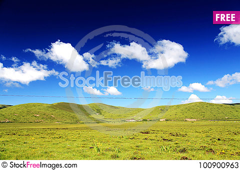 Free The Alpine Grassland Scenery On The Qinghai Tibet Plateau Stock Photos - 100900963