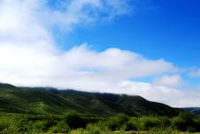 The Alpine Grassland Scenery On The Qinghai Tibet Plateau Royalty Free Stock Photo