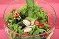 Free A Fresh Olive Salad Stock Photos - 1010293