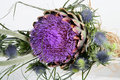 Free Violet Flower Composition Royalty Free Stock Image - 1010836