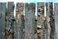 Free Pine Fence Royalty Free Stock Photography - 1010047