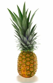 Free Isolated Pineapple Royalty Free Stock Images - 1012179