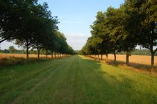 Free Walk To Althorp Royalty Free Stock Images - 1012689