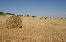 Free Bales Of Hay Stock Photos - 1016463