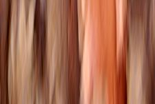 Free Abstraction Royalty Free Stock Photography - 1018627