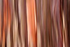 Free Abstraction Royalty Free Stock Photos - 1018628