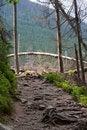 Free Mountain Path Stock Photos - 10107273