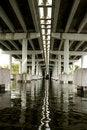 Free Underneath Concrete Bridge Royalty Free Stock Photo - 10109195