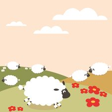 Free Sheep Stock Image - 10100061