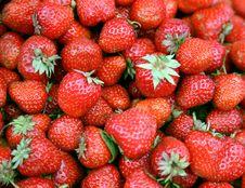 Free Fresh Strawberry Stock Image - 10101011