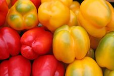 Free Colorful Peppers Royalty Free Stock Images - 10101139