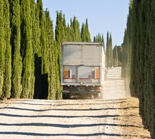 Free Cypresses Road And The Truck Stock Photos - 10101413