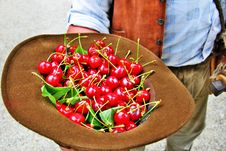 Free Cherries Stock Images - 10101954