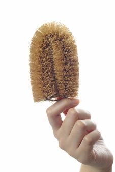 Free Washing Scrubber In Female Hand Stock Photography - 10102802