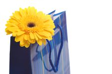Free Paper Bag For Gifts Stock Images - 10107184