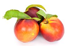 Free Fresh Ripe Peach , Close Up Stock Photo - 10109110