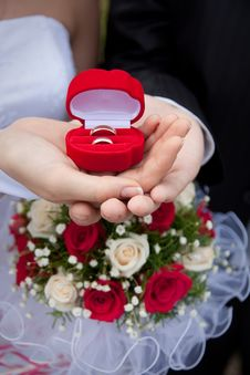 Free Wedding Rings In Hands Royalty Free Stock Photo - 10109535