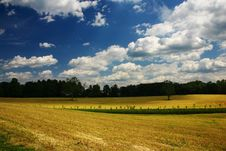 Free Clouds And Fields Royalty Free Stock Photo - 10109605