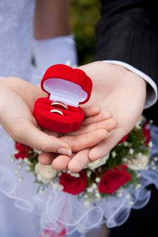 Free Wedding Rings In Hands Stock Photo - 10109660